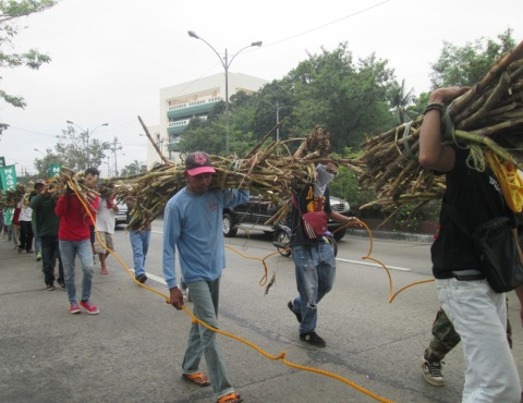 Farmers carrying bundles of sugarcanes during a march to the House of Representatives.